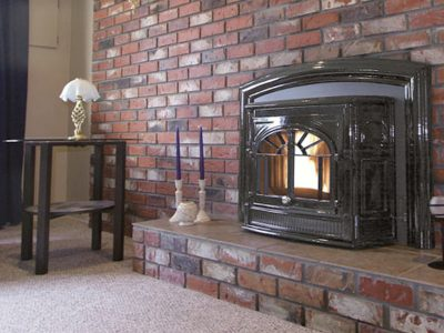 Enviro Empress Cast Iron Pellet Burning Fireplace Insert Ottawa